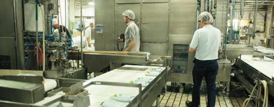SKF Lubrication Practices for food and beverage